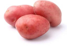 potato young red