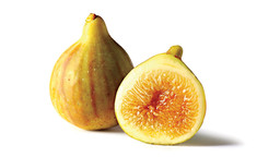 fig yellow